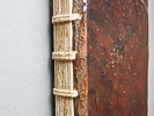 Degradatie en restauratie: een koorboek uit Ter Doest (handschrift 307)